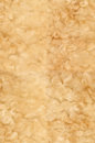 Texture wool Royalty Free Stock Photos