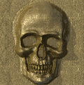 Textured metal skull Stock Image