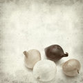Textured old paper background with mini onions Royalty Free Stock Images