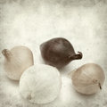 Textured old paper background with mini onions Royalty Free Stock Photo