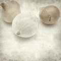 Textured old paper background with mini onions Stock Photography