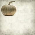 Textured old paper background with pumpkin Stock Photography
