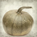 Textured old paper background with pumpkin Stock Photos