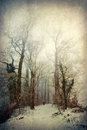 Textured picture of a snow covered landscape with path and gnarled trees Royalty Free Stock Photos