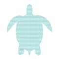 Textured sea turtle on isolated on white