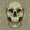 Textured skull Royalty Free Stock Photo