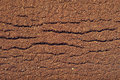 Textuur van grondkoffie Stock Foto's