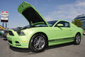 Th anniversary ford mustang event at charlotte motor speedway of the this newer model green along with thousands of other Royalty Free Stock Images