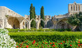 13th century Gothic monastery at Bellapais,northern cyprus 4 Royalty Free Stock Photo