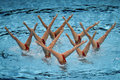 15th Fina world Championship syncro swimming technical team Royalty Free Stock Photo