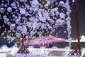 Harbin Ice Festival 2018 - 哈尔滨国际冰雪节 Ice bubbles - ice and snow buildings, fun, sledging, night, travel china