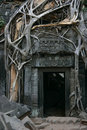 Tha Prohm, Angkor Royalty Free Stock Photography