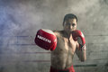 Thai boxers punch. Of Muay Thai Sports a professional Royalty Free Stock Photo