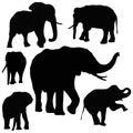 Thai Elephants Royalty Free Stock Photo