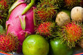 Thai fruits Stock Image