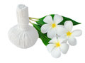 Thai herbal compress for spa with frangipani Stock Photography