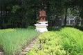 Thai joss house at the garden Royalty Free Stock Photos