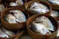 Thai mackerel in thailand fish in thailand Stock Images
