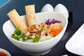 Thai Salad and Spring Rolls Stock Photos
