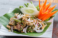 Thai spicy minced meat salad pork food Royalty Free Stock Photo
