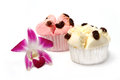 Thai steam cup cake Royalty Free Stock Photography