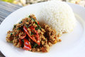 Thai style stir fried spicy minced pork with basil and chili served with steamed rice. Royalty Free Stock Photo