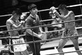 Thai young boxers fighting on boxing ring ubon ratchathani thailand – june unidentified june in wing air force army ubon Stock Photos