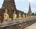 Photo : Thailand - Ayutthaya young sun field