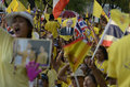Thailand tausende von thailaender zelebrieren den kroenungstag des koenig bhumibol auf dem sanam luang park vor dem wat phra kaew Royalty Free Stock Images