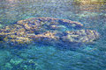 thailand in water  kho tao bay abstract of rock Royalty Free Stock Photo