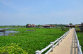 Thale noi lake and waterfowl park at phatthalung province thailand non hunting area Royalty Free Stock Image