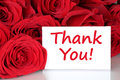 Thank you card with red roses flowers Royalty Free Stock Photo