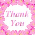 Thank You Greeting Card. Illus...