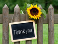 Thank you message written in white letters on black chalkboard in a wooden frame hung from a post of a wooden fence with a big Stock Images