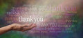Thank you so much female hand outstretched with the word floating above surrounded by many different colored words on a wide Royalty Free Stock Photography