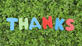 Thanks written with wooden colored letters in the nature Royalty Free Stock Photos