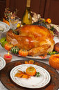 Thanksgiving Stock Image