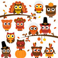 Thanksgiving and autumn themed vector owl collection with branches Royalty Free Stock Image