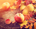 Thanksgiving background. Autumn colorful leaves, apples and pears Royalty Free Stock Photo