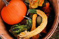 Thanksgiving basket Royalty Free Stock Image