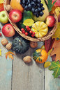 Thanksgiving concept fresh ripe pumpkins apples grape and nuts in wicker basket over wooden background Stock Images