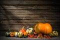 Stock Image Thanksgiving