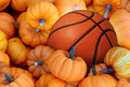 Thanksgiving day basketball and autumn sports during harvest time with a holiday tournament ball in a pile of orange pumpkins as a Royalty Free Stock Images