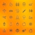 Thanksgiving Day Thin Line Icons Set