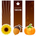 Thanksgiving day vertical banners a collection of three with a sunflower an acorn and a traditional pumpkin on brown background Stock Photo