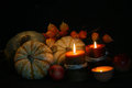 Thanksgiving fall harvest iv isolated on black background Stock Images