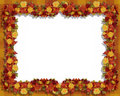 Thanksgiving Fall Leaves and flowers Frame Royalty Free Stock Photos