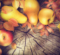 Thanksgiving frame background. Autumn leaves, apples and pears Royalty Free Stock Photo