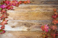 Thanksgiving  greeting background with fall maple leaves Royalty Free Stock Photo