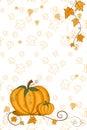 Thanksgiving greeting card - pumpkin Royalty Free Stock Image